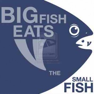 tsmitty11 big eats small fish